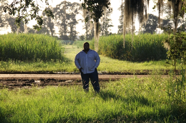 Standing in front of a Sugarcane field, LA, Evergreen Plantation