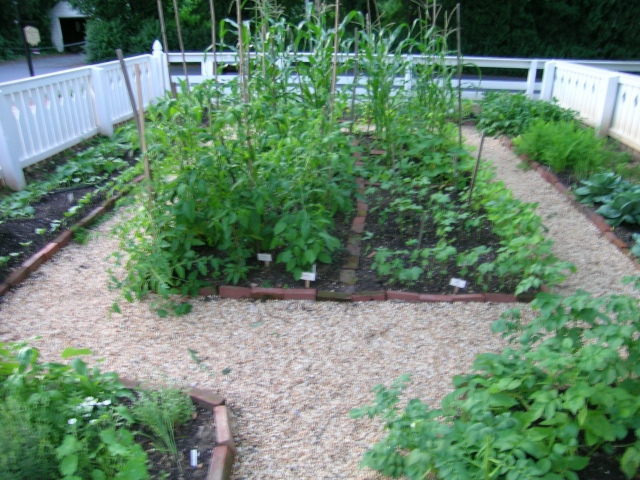 A 19th Century Heirloom Kitchen Garden I Grew Myself, 2009