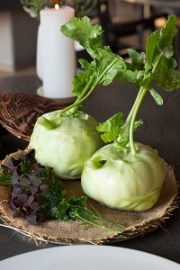 The Nordic Coconut--Fermented Kohlrabi Juice with dog fennel and other wild herbs