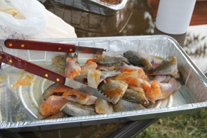 Catfish and Bream ready to fry, Heath Springs, South Carolina